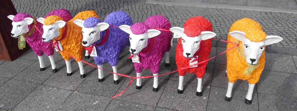 0304 41 bunte Schafe groß